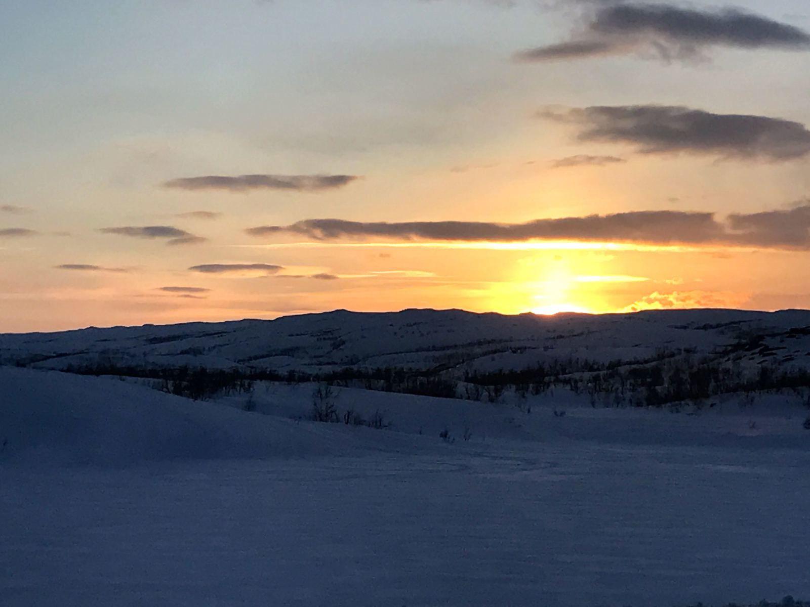 Ski en Laponie Suédoise, et en Norvège https://www.geromegualaguidechamonix.com