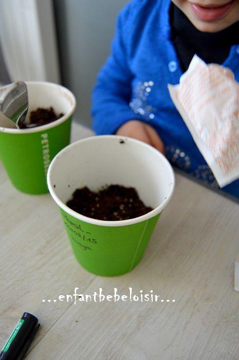 Jardiner avec son enfant - planter des plantes aromatiques