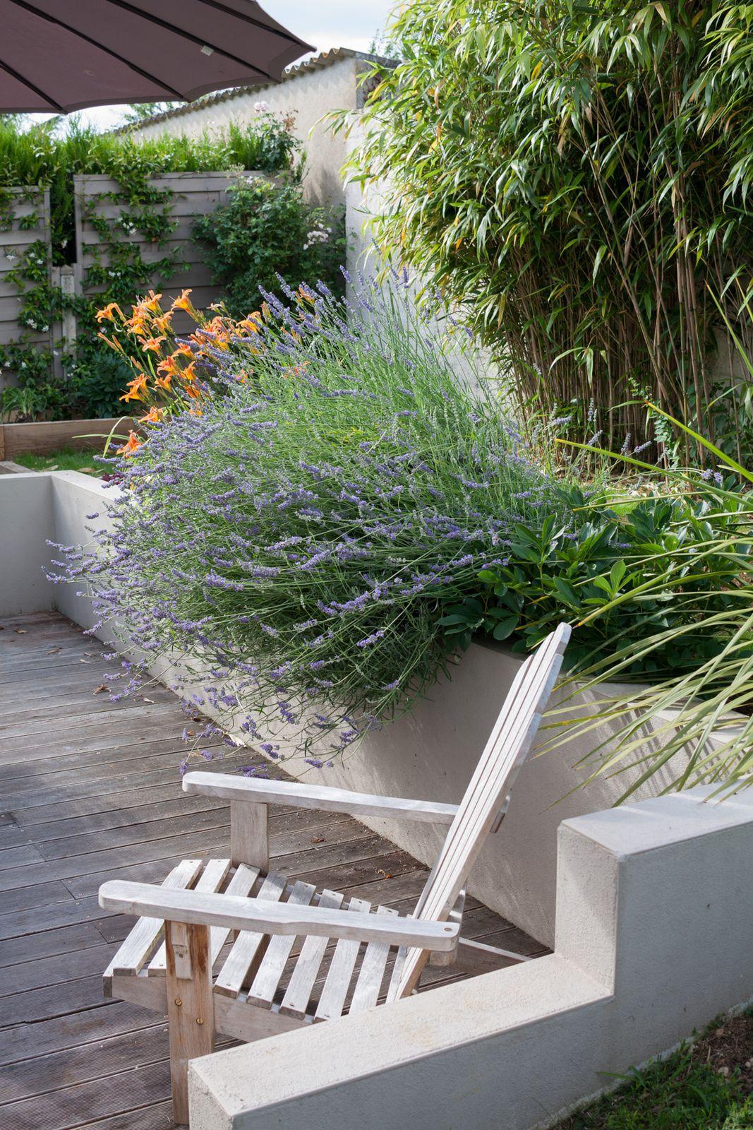L'aménagement du jardin #3