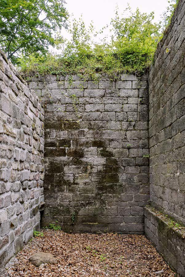 BRUYERES-VOSGES : une visite du Château jamais imaginée