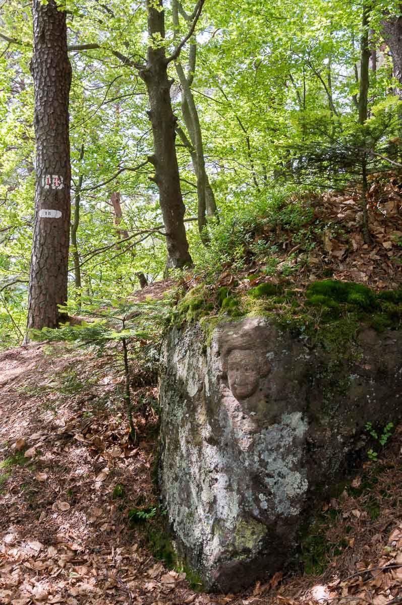 BRUYERES-VOSGES : les mystères de l'Avison