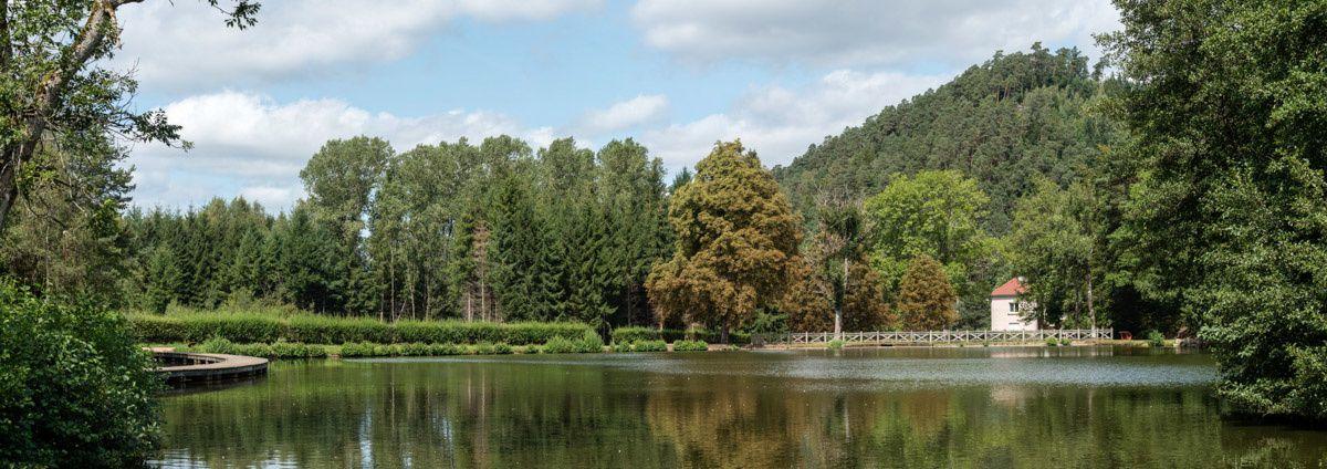 BRUYÈRES-VOSGES, à l'étang de Pointhaie en août 2015