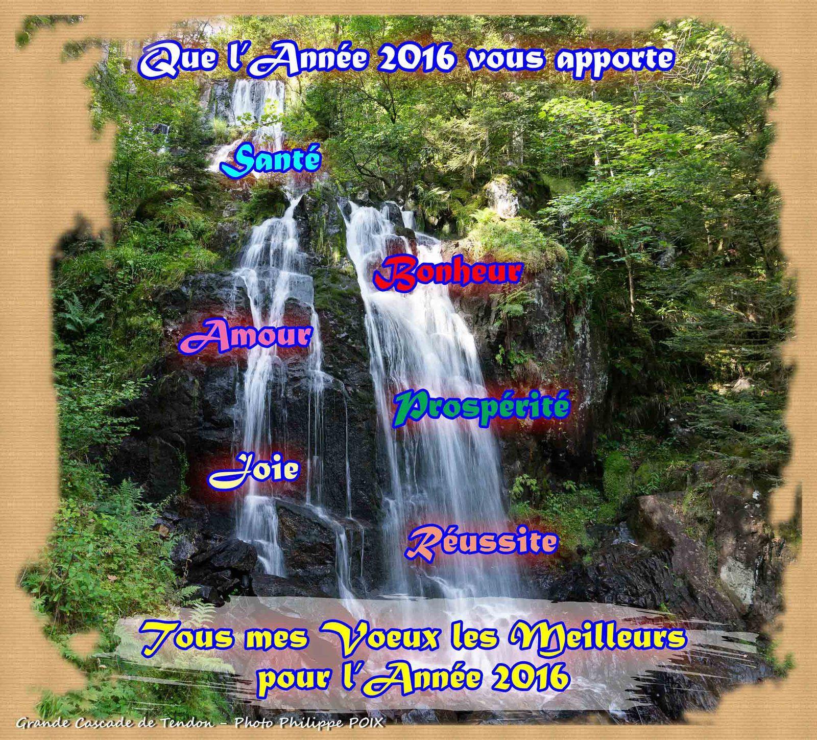 Bonne et Heureuse Année 2016 à tous les Visiteurs de BRUYÈRES-VOSGES