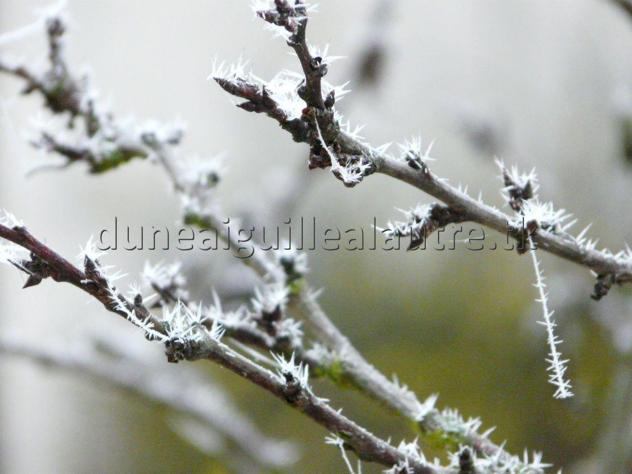 l'hiver arrive!!!