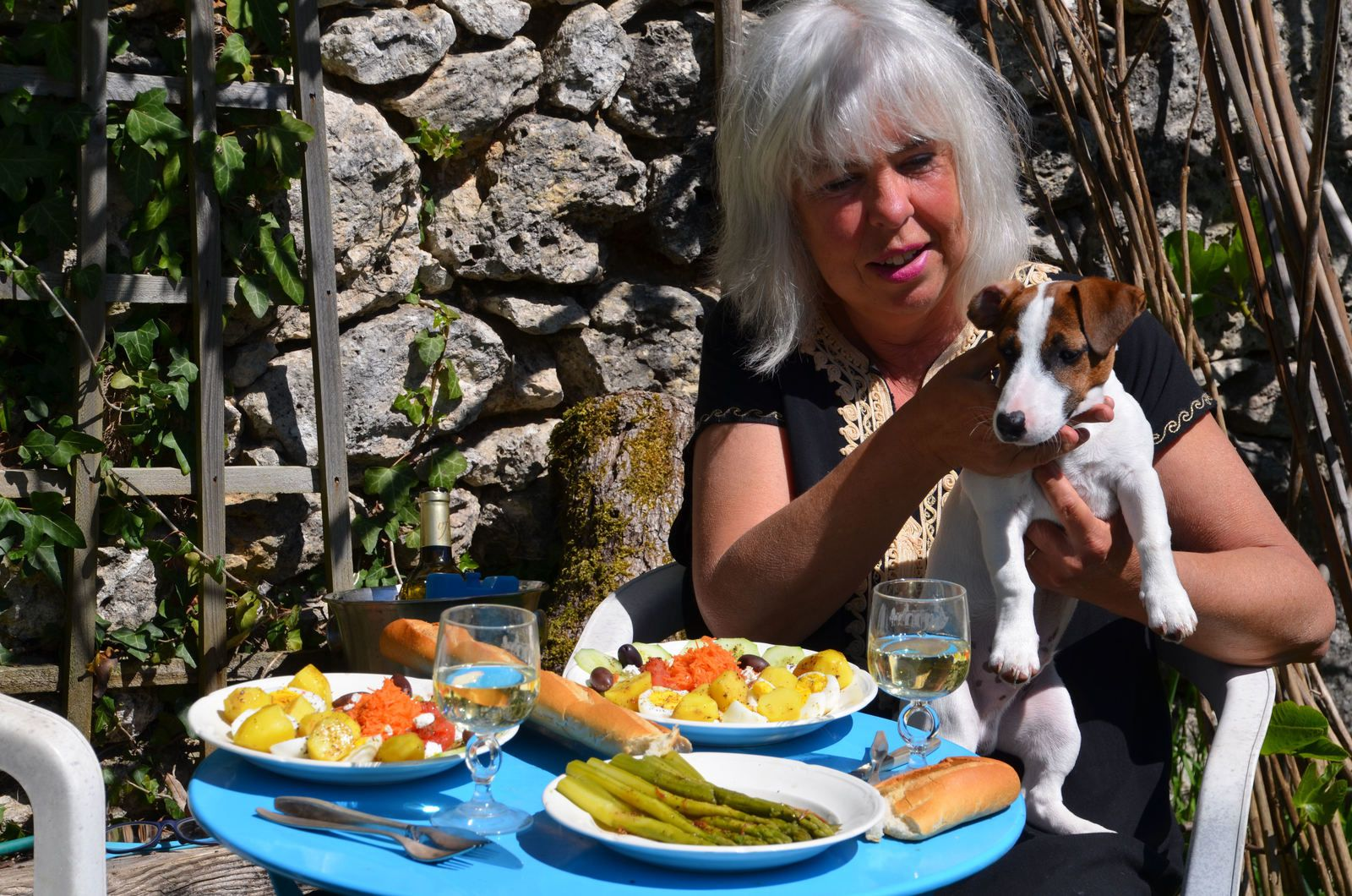 Domaine les Cyprès - le vignoble - le jardin