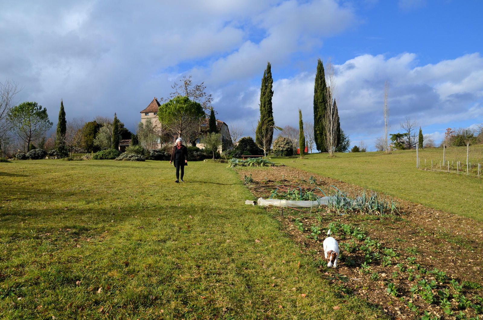 Atelier carnet de jardin potager atelier de jelly for Jardin potager 2015