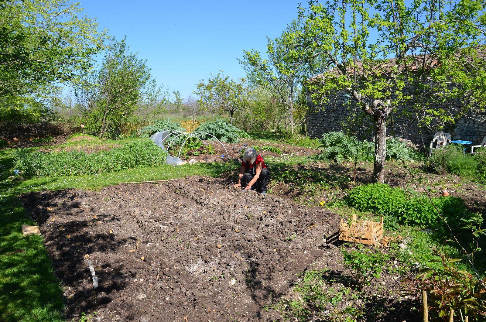 Jardin - peinture - potager