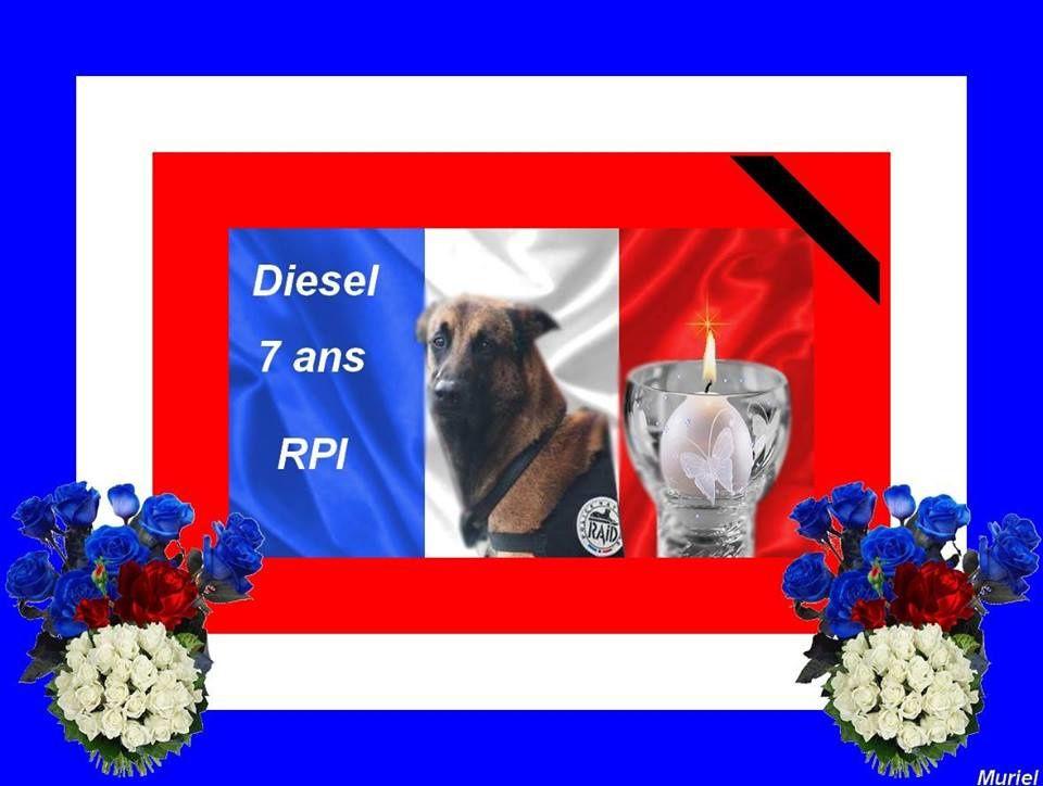 Ma France a mal et pleure....