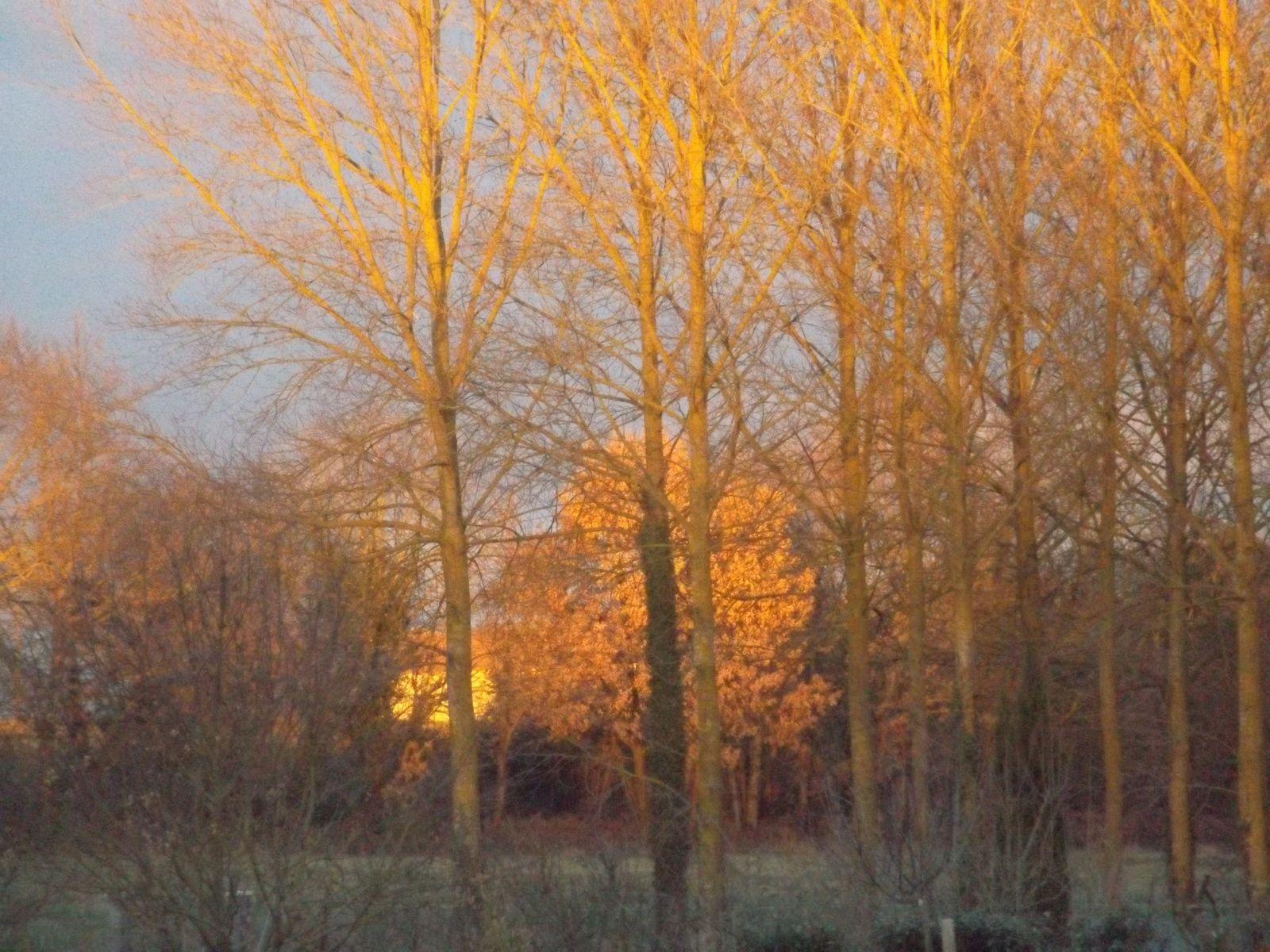 tout fini par le coucher du soleil..