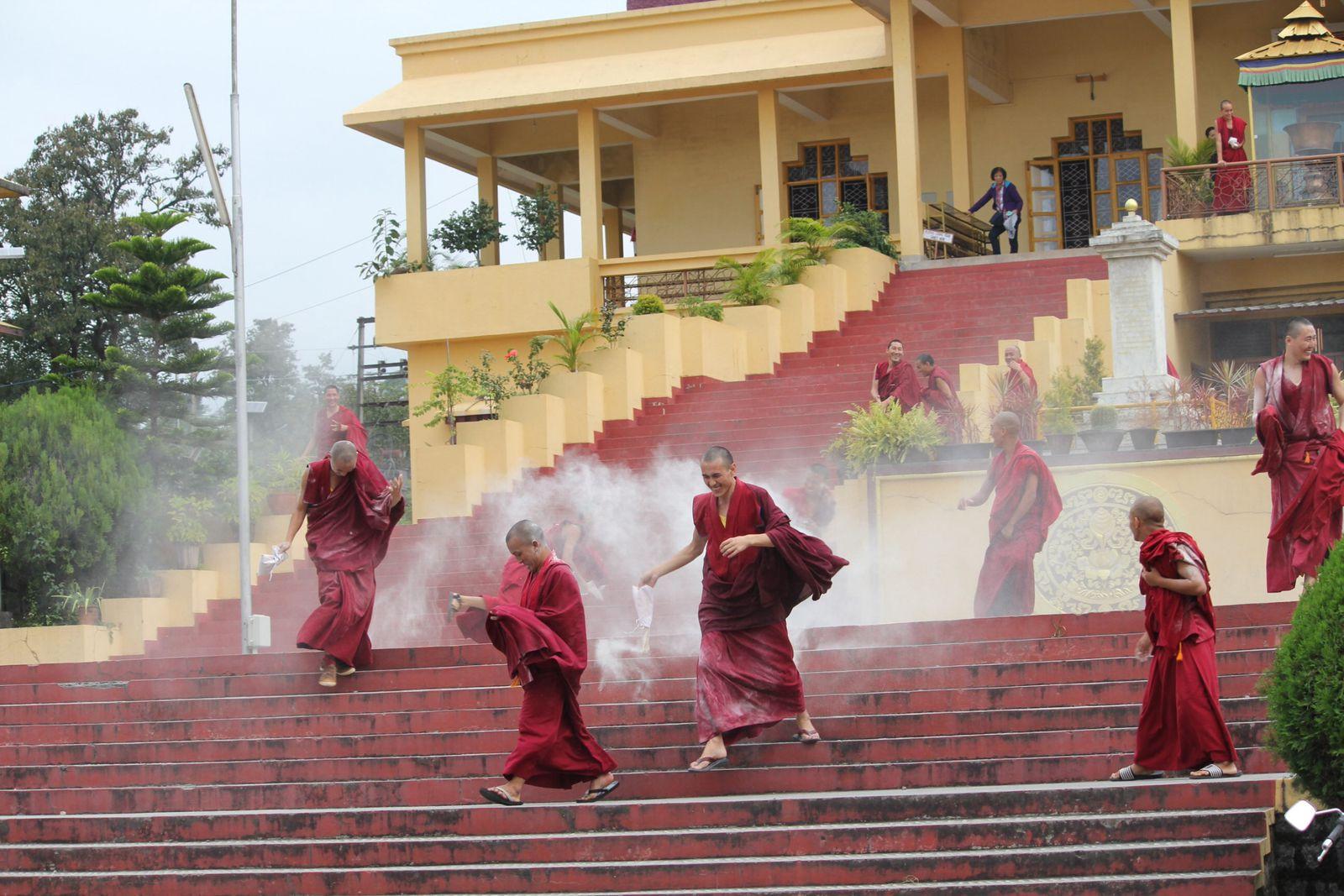 Namlang cottage a Bir, Gyuto tantric gompa, Dharamsala