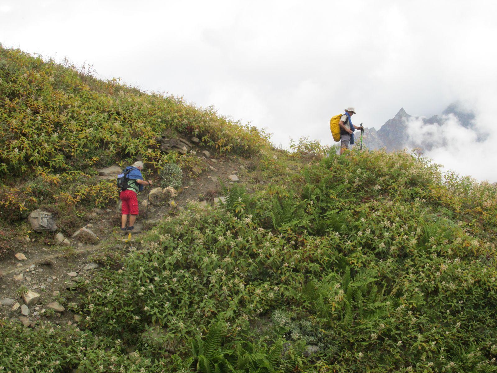 La montée est assez raide mais le sentier est beau!