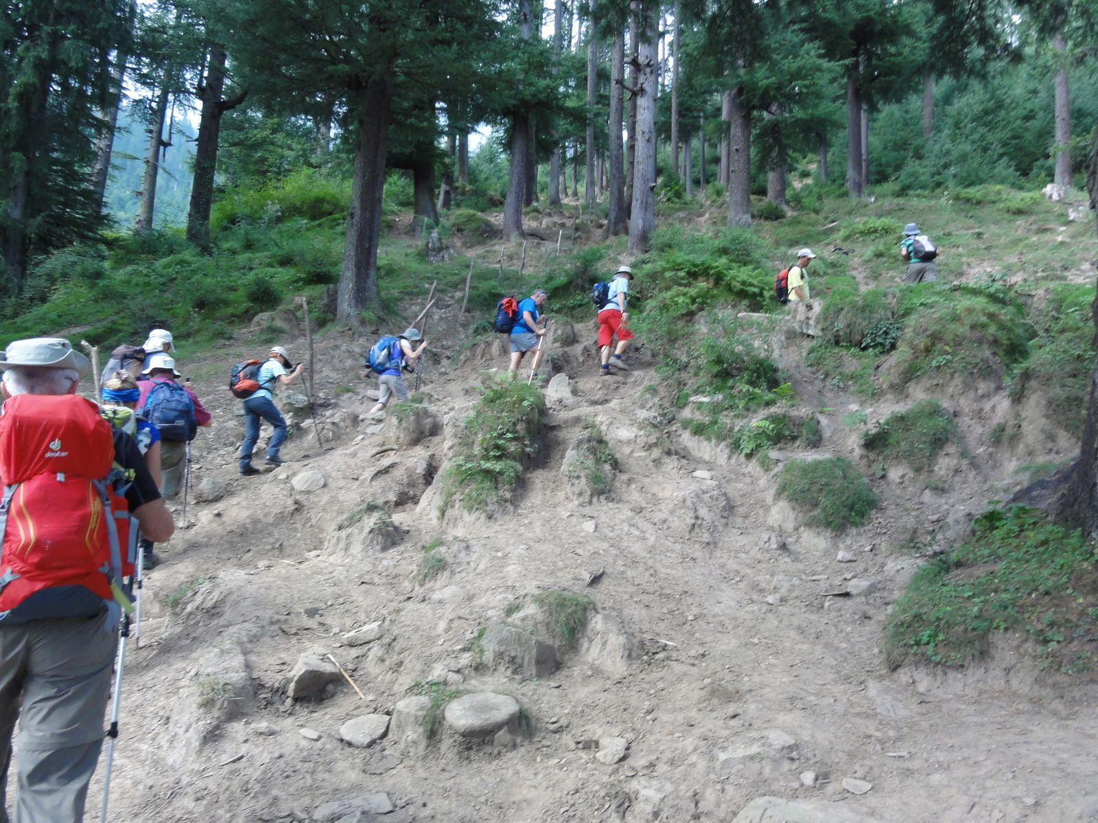 Le groupe durant une montée assez raide.