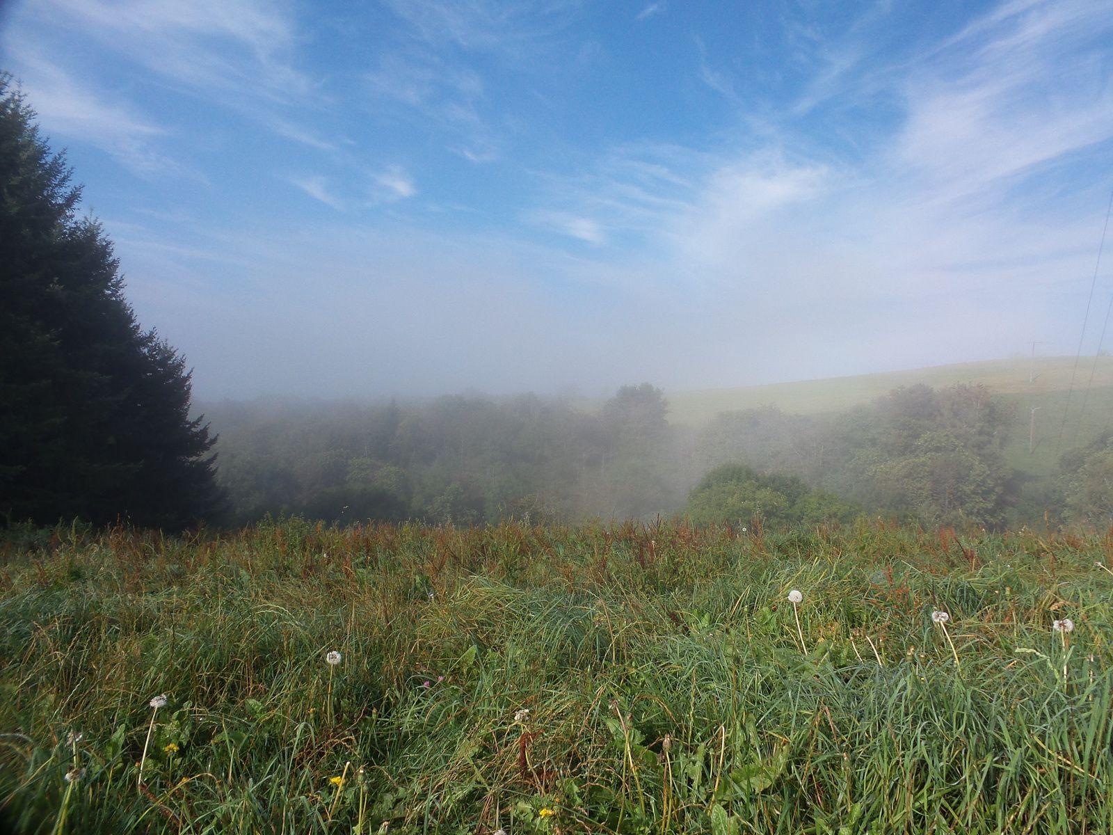 Debut  de la marche sous le brouillard qui laisse très vite la place au soleil