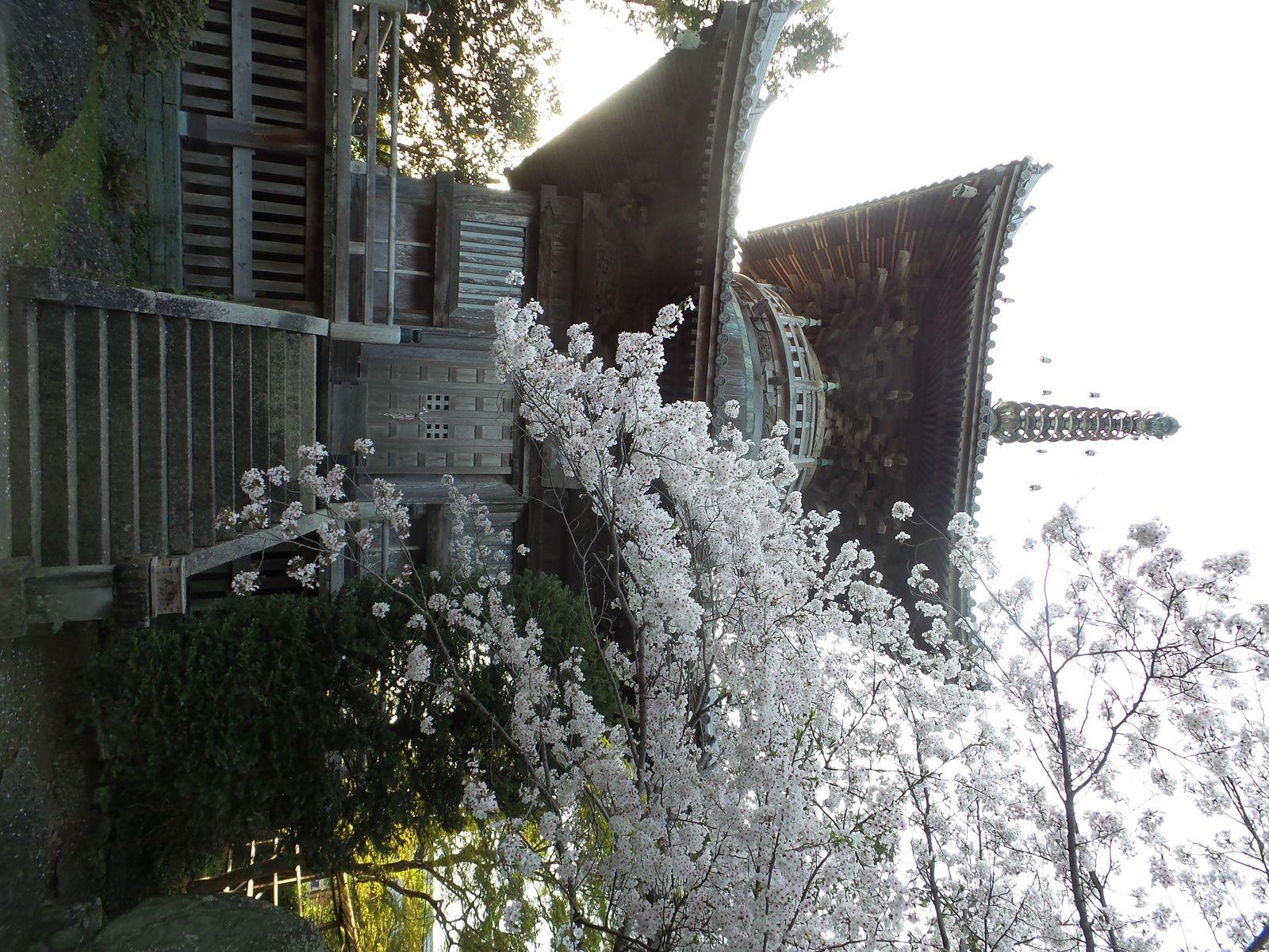 Temple 1 - Ryozenji