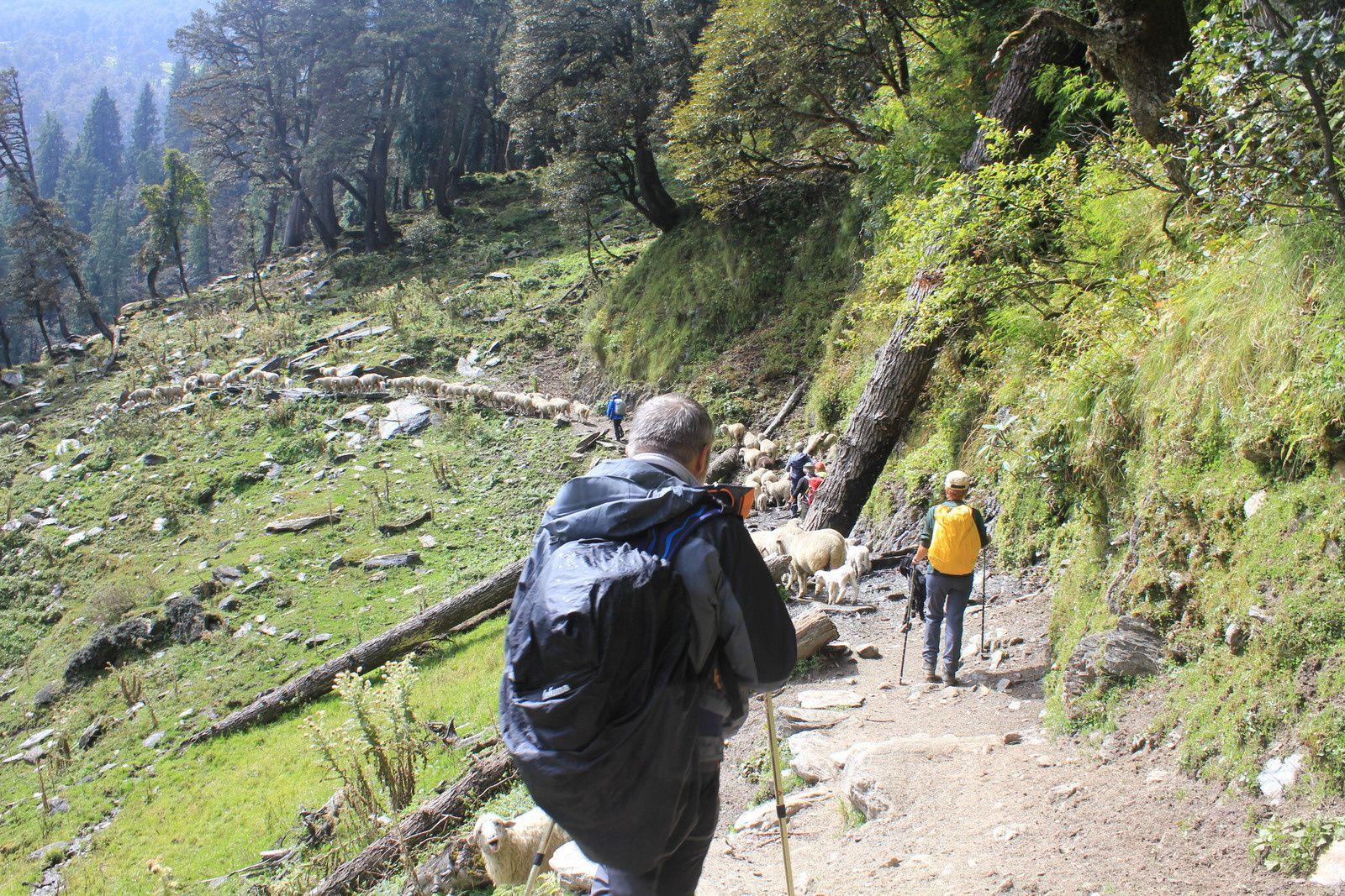 2013 Trek Bara Bhangal - Jour 11
