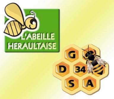 Assemblées Générales GDSA et Abeille Héraultaise. Inauguration des locaux