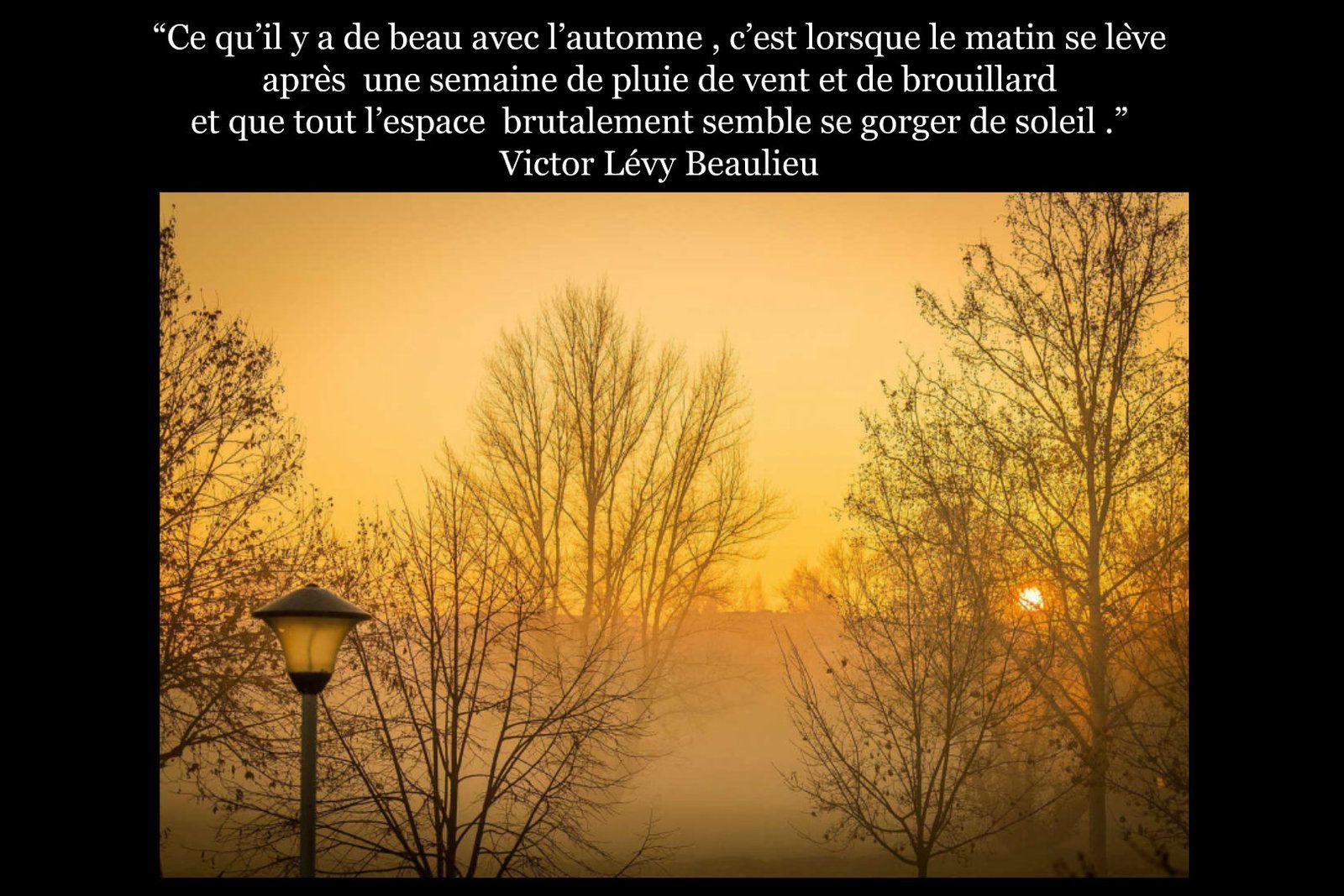 Image Citation 33 Quai Des Rimes