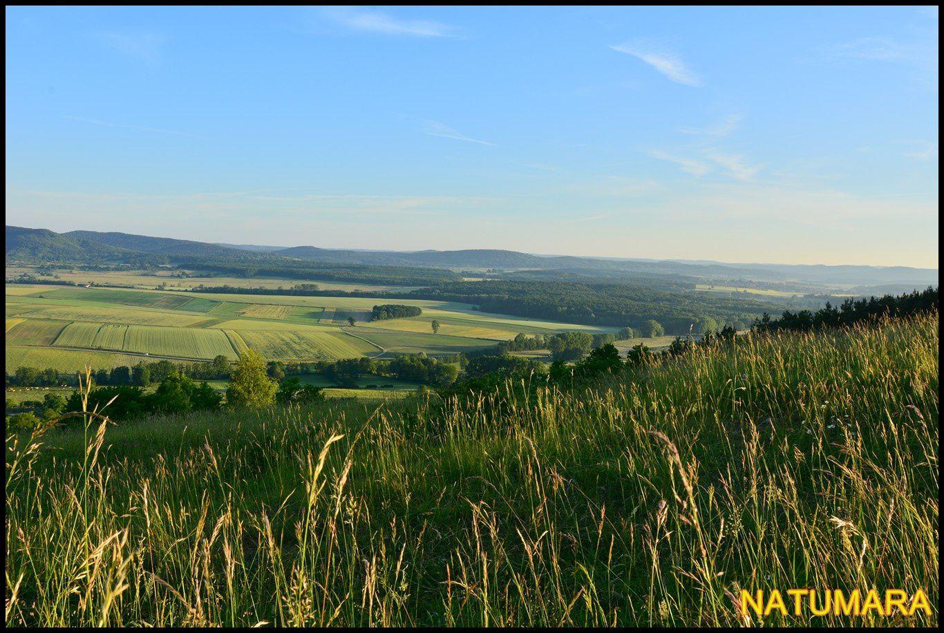 Couleurs du Pays de Hanau, le Bastberg colline magique