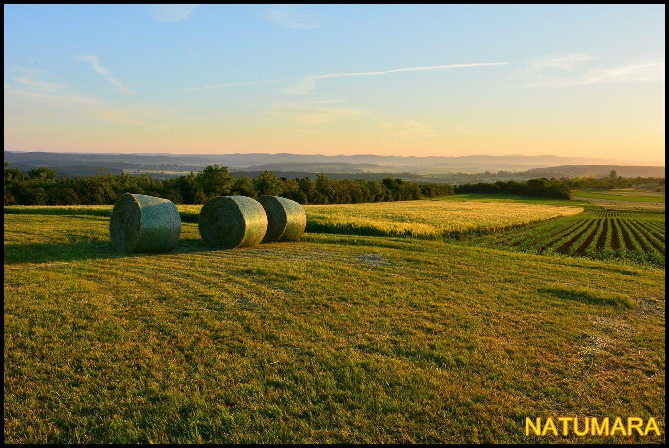 Au loin, les Vosges du Nord et vue sur les villages de Griesbach le bastberg et Neuwiller les Saverne