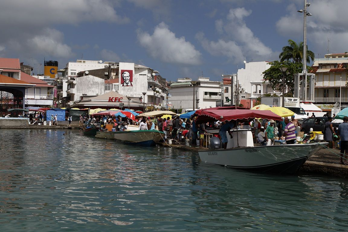 Marché aux poissons de Pointe à Pitre ( Guadeloupe)