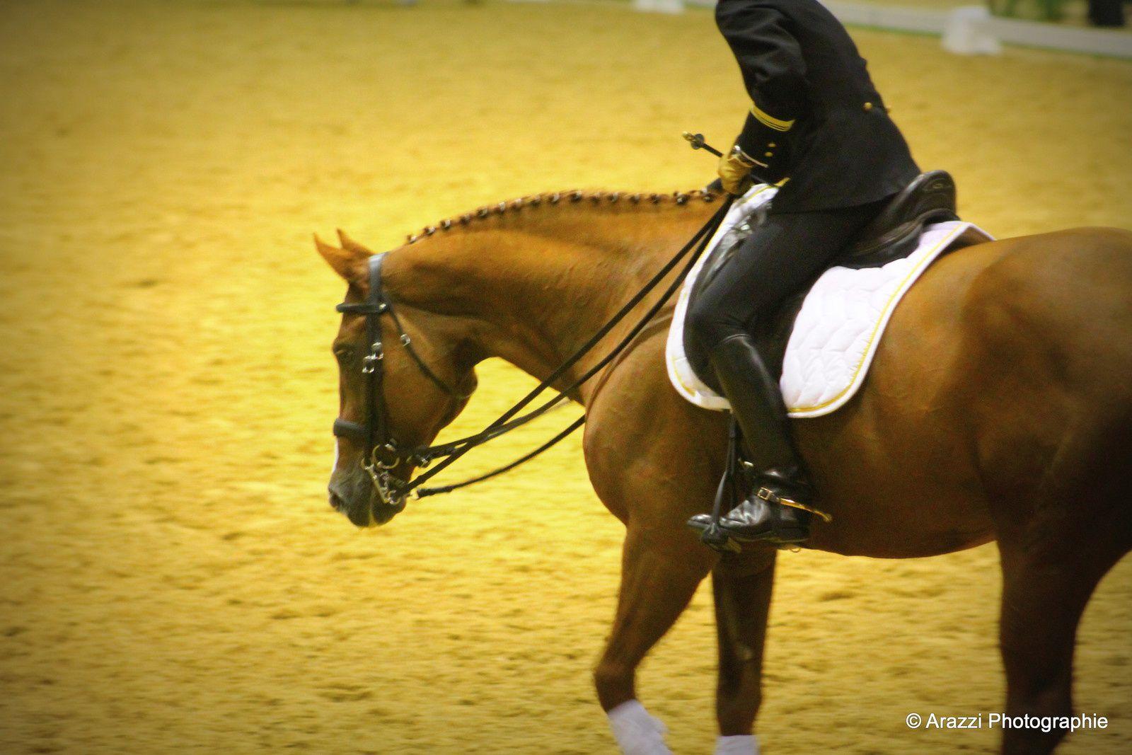 Saumur 2016 : vendredi 14 octobre, partie 18 : Présentation par Pauline Van Landeghem et Fabien Godelle avec leurs deux chevaux.