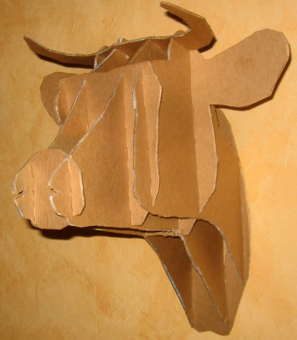 Trophé tête de vache ----  Head cow  trophy