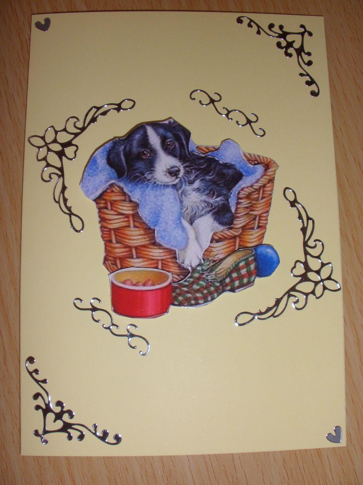 Des chiens de toutes races sont immortalisés sur ces cartes.