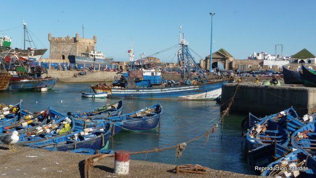 Essaouira en Images