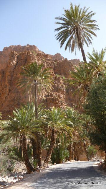 Photo du Canyon et des Gorges de Aït-Mansour