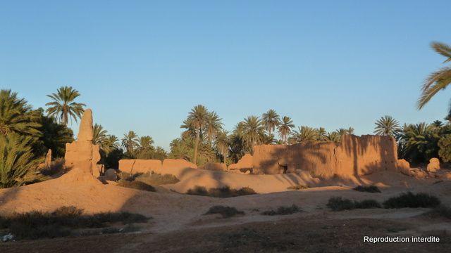 Du haut vers le bas: les montagnes entre Sidi Ifni et Guelmin, La Palmeraie de Tighmert, Couché de soleil sur la Palmeraie