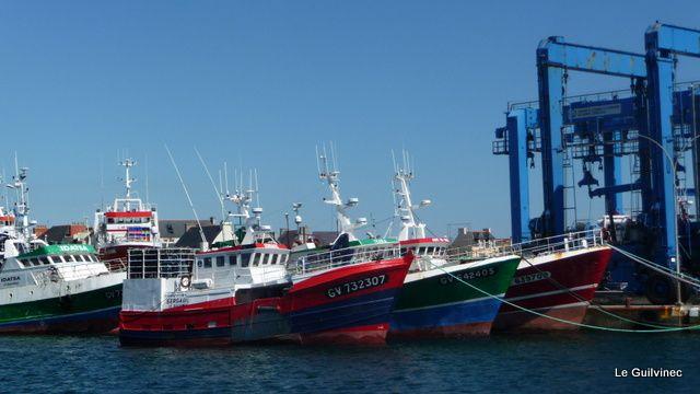 Le Port du Guilvinec
