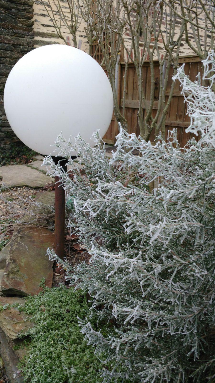 La photo du 03/02/17 : paysage gelé