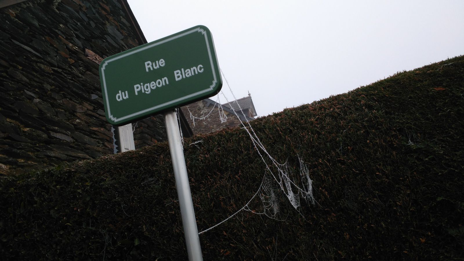 La photo du 05/02/17 : panneau gelé