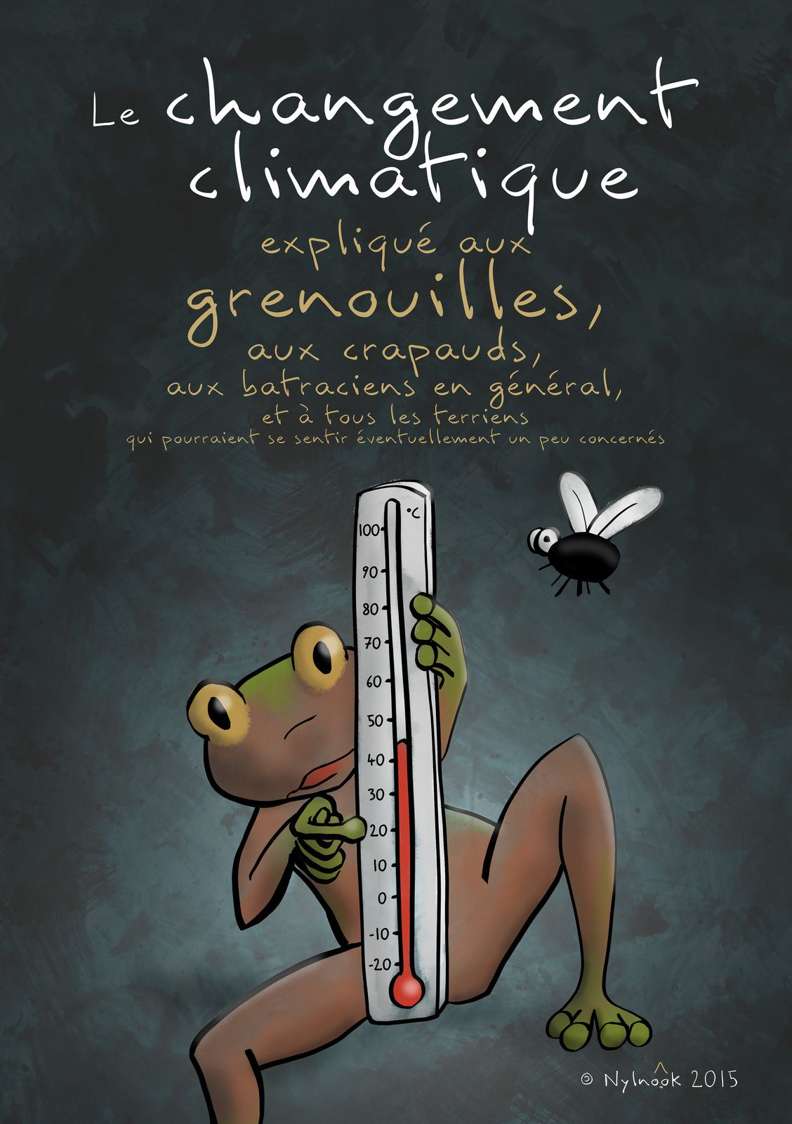 Albums Accessibles: Camille Bissuel ...
