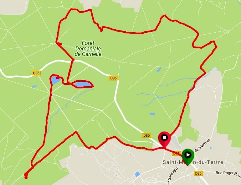 Une belle marche de 15 km dans cette forêt bien agréable du Val d'Oise. Sous la conduite de Christian 17 randonneurs ont eu bien chaud encore aujourd'hui !