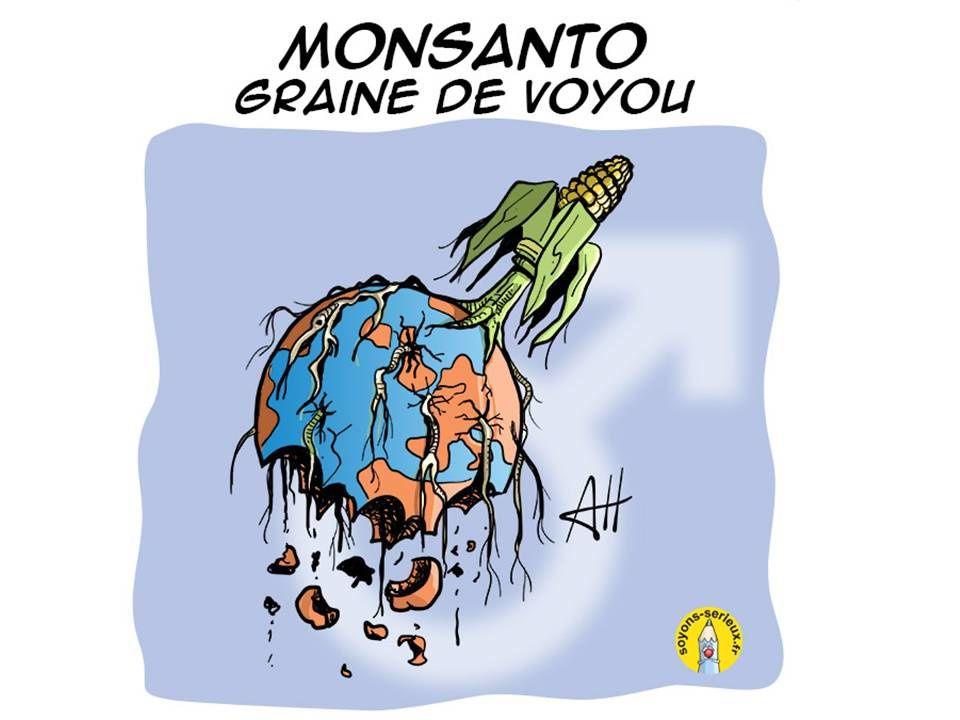 Argentine : une enquête révèle la dangerosité des produits de Monsanto sur la population (Associated press)