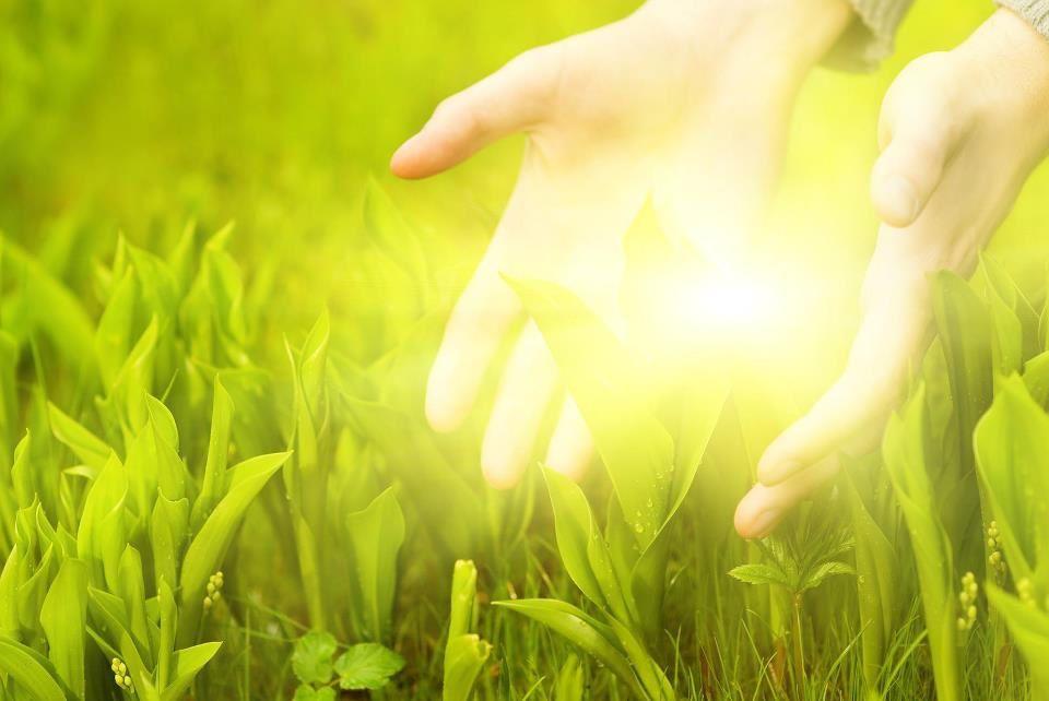 Qu'est-ce que l'Énergie Vitale Universelle de Vie