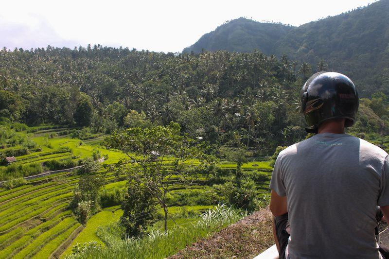 Rizières dans l'est de Bali.