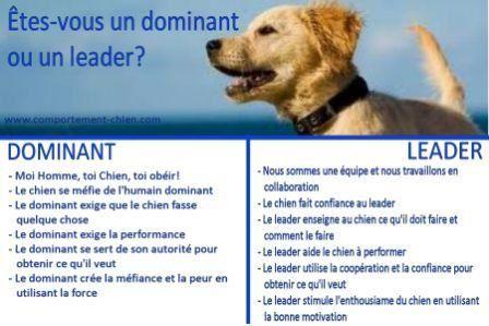 Pour en finir avec le leadership et la dominance