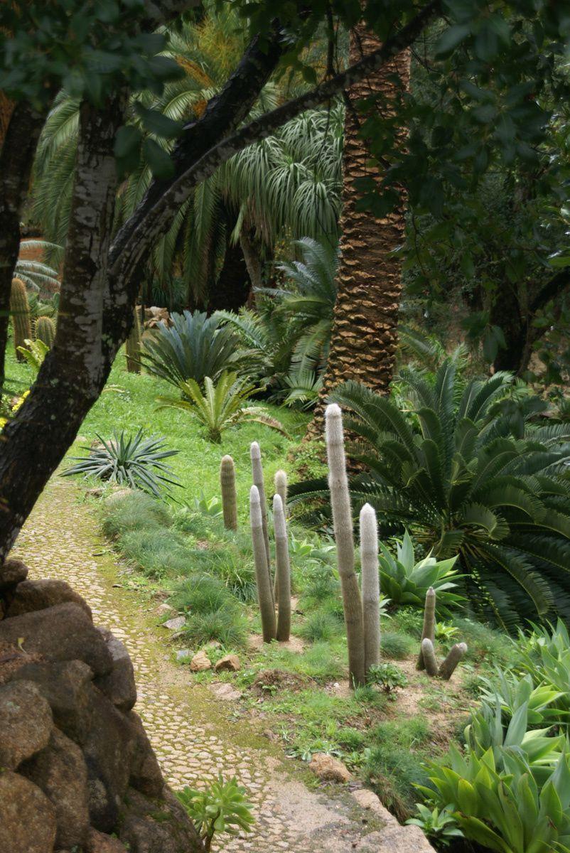Jardins de Sintra