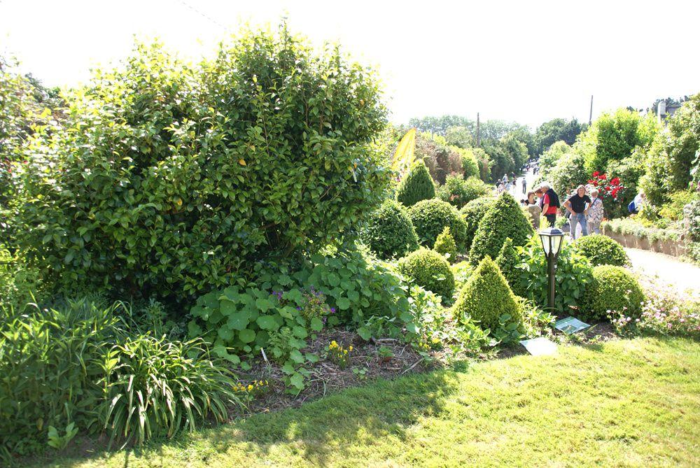 bienvenue dans mon jardin 2015 le blog des 7 jardins. Black Bedroom Furniture Sets. Home Design Ideas