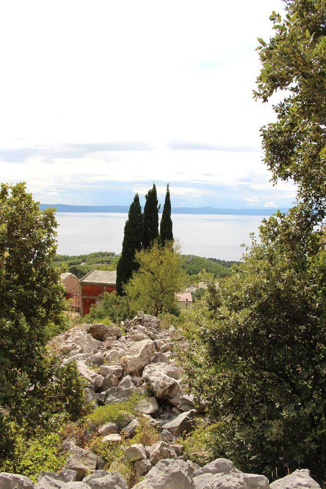 Jardin botanique du biokovo le blog des 7 jardins for Jardin botanique rabais 2015