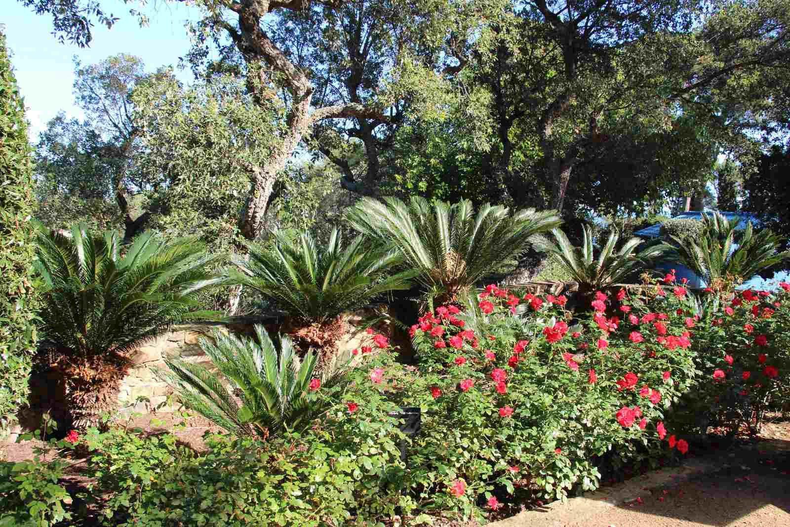 Jardin du Cap Roig