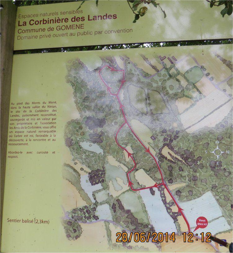 Nous sommes (comme l'indique ce panneau) proches de la Corbinière des Landes, un site que nous avons visité il y a déjà de nombreuses années… mais ce n'est pas vers lui que nous allons nous diriger d'abord.