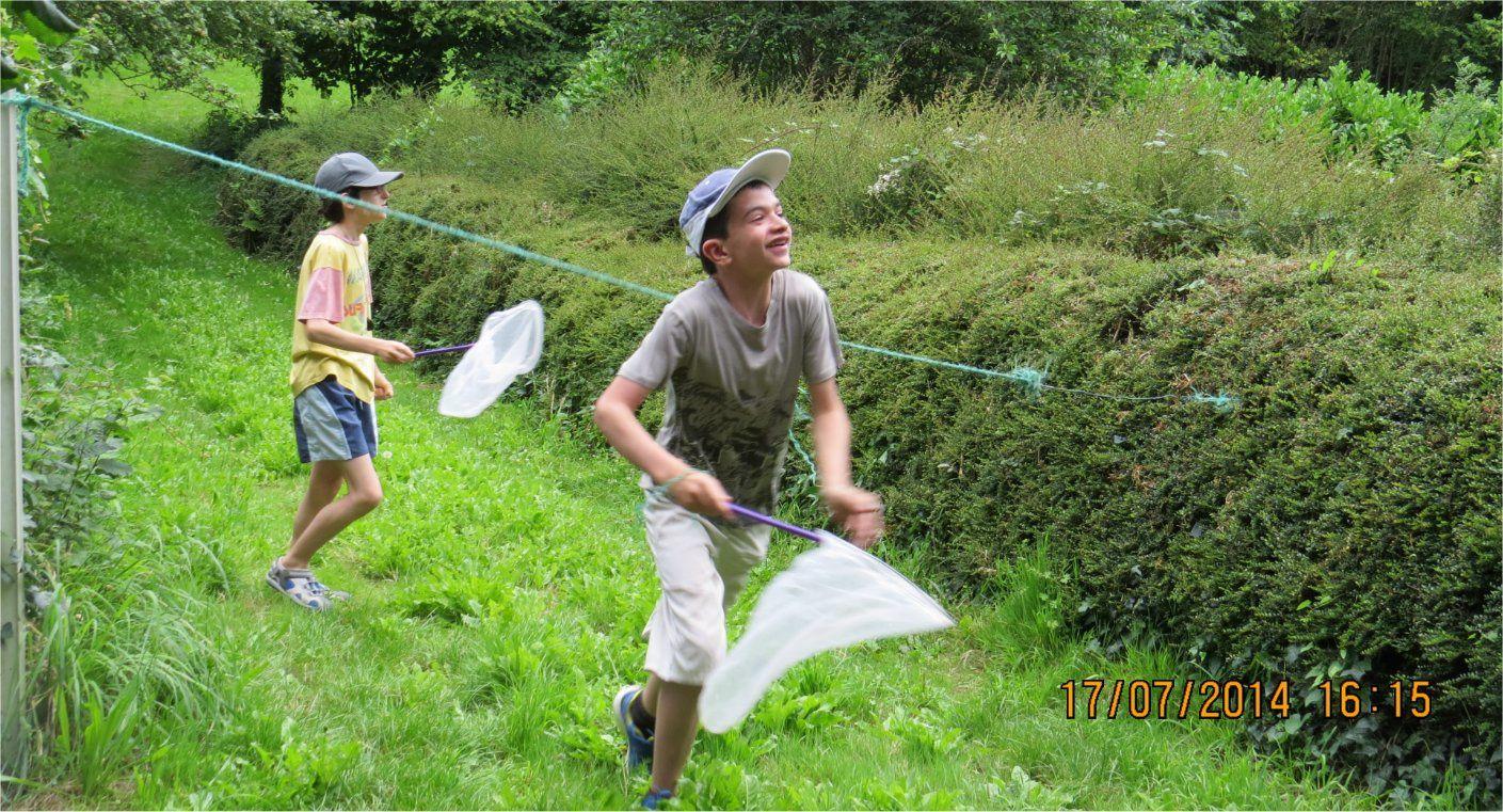 Voyez l'enthousiasme de ces jeunes à qui on a remis des filets pour attraper les papillons !