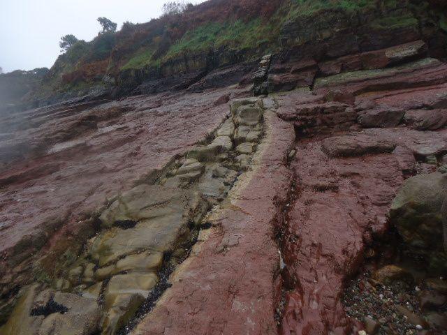Voici parmi les argilites un nouveau filon.. que l'on suit bien sur l'estran d'abord et dans la falaise aussi...