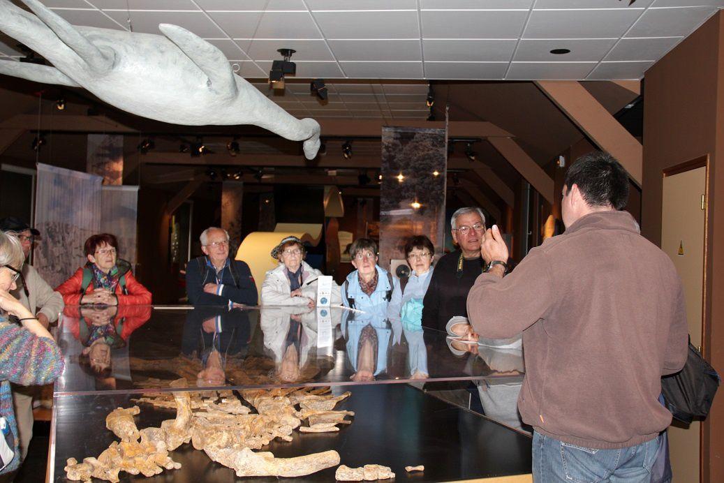 Cependant c'est Anthony présentant son Plésiosaure (le squelette en bas - l'animal en haut) qui a eu la vedette !