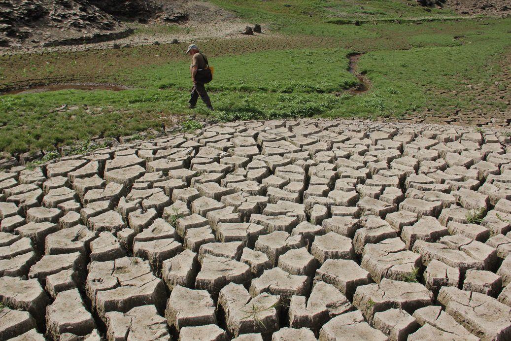 ... elles indiquent que les sédiments sont argileux : l'argile en effet en perdant de l'eau diminue aussi de volume et se rétracte.