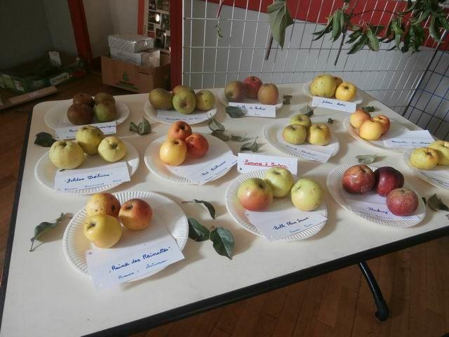 ...et une grande variété de pommes.