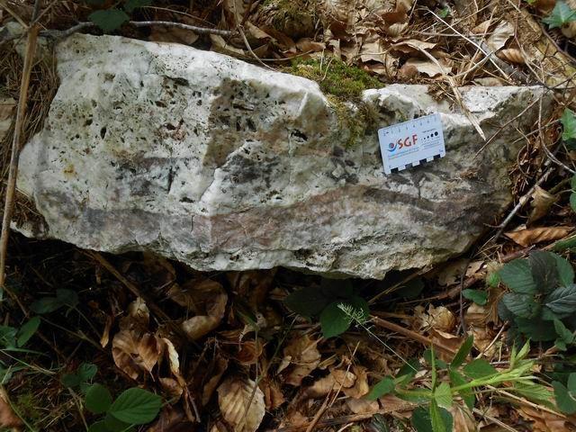 Ce bloc de quartz montre un faciès rubané.